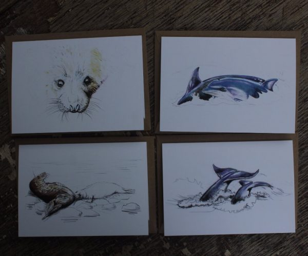 dolphins and seals art cards