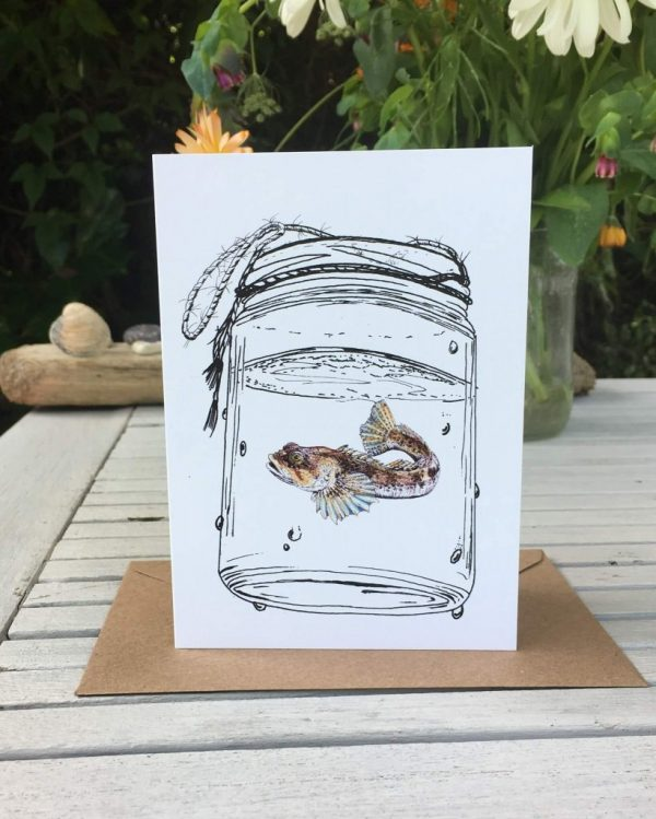 Freshwater life art cards