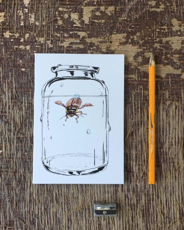 Diving Beetle Pocket Notebook