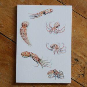 Octopus A5 Sketchbook