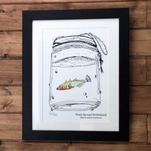 Stickleback Art Print