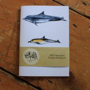cetacean notebook