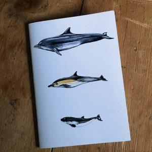 Cetaceans Pocket Notebook