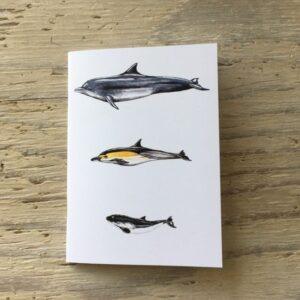 Cetaceans Pocket Notebook