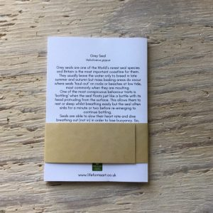 grey seal pocket notebook back