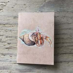Hermit Crab Pocket Notebook