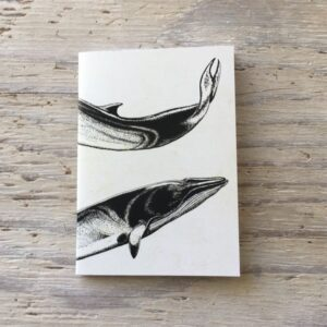 Minke Whale Pocket Notebook