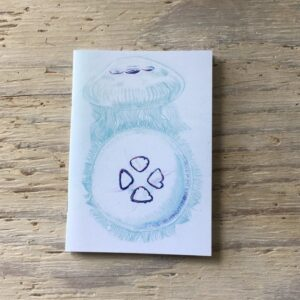 Moon Jellyfish Pocket Notebook
