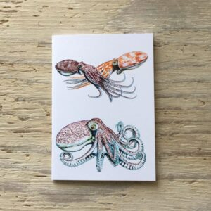 Octopus Pocket Notebook