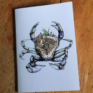 Pennant's Swimming Crab Pocket Notebook