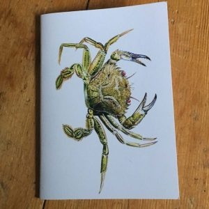 Velvet Swimming Crab Pocket Notebook