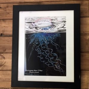 Portuguese man o'war art print