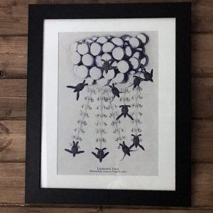 Hatchling Turtles Art Print
