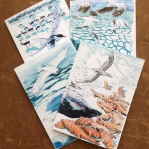 Northern Flights Art Cards