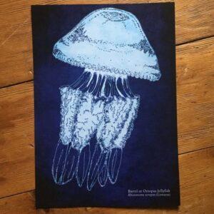 Barrel Jellyfish Art Print