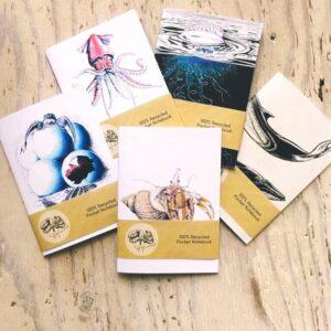 Special Order – Cardigan Bay Marine Wildlife Centre