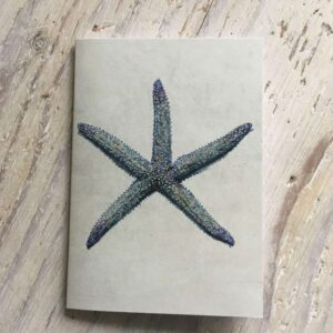 Spiny Starfish Pocket Notebook