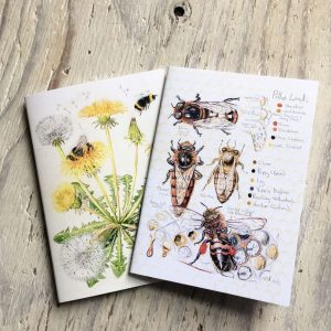 Bees Pocket Notebooks