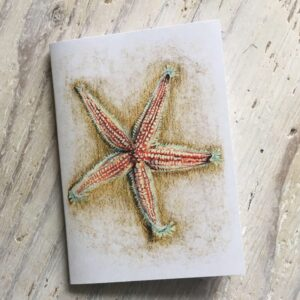 Common Starfish Pocket Notebook