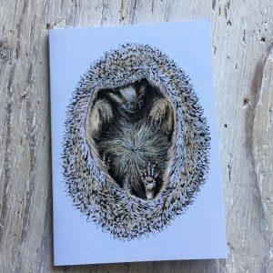 Hedgehog Pocket Notebook
