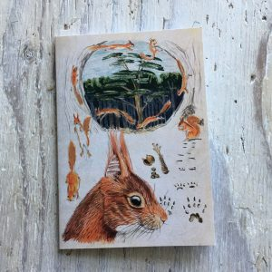 Red Squirrel Pocket Notebook