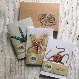 Starfish Pocket Notebook Gift Set