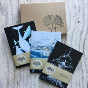 Whales Pocket Notebook Gift Set