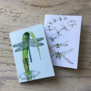 Dragonfly Pocket Notebooks