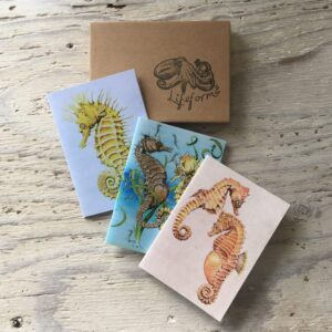 Seahorse Pocket Notebook Gift Set