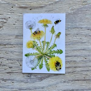 bumblebee and dandelion postcard